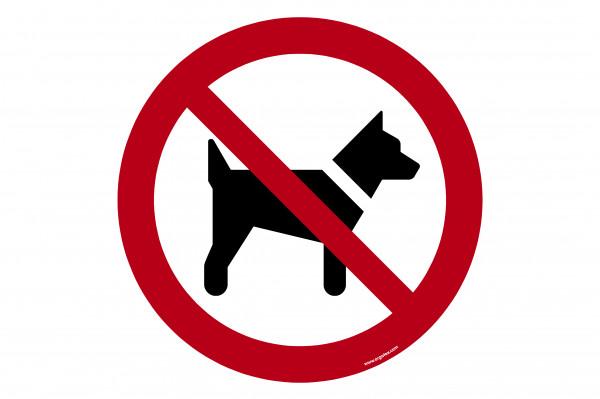 """Bodenkennzeichnungsschild """"Mitführen von Hunden verboten"""""""